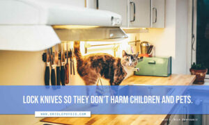 Lock knives so they don't harm children and pets.
