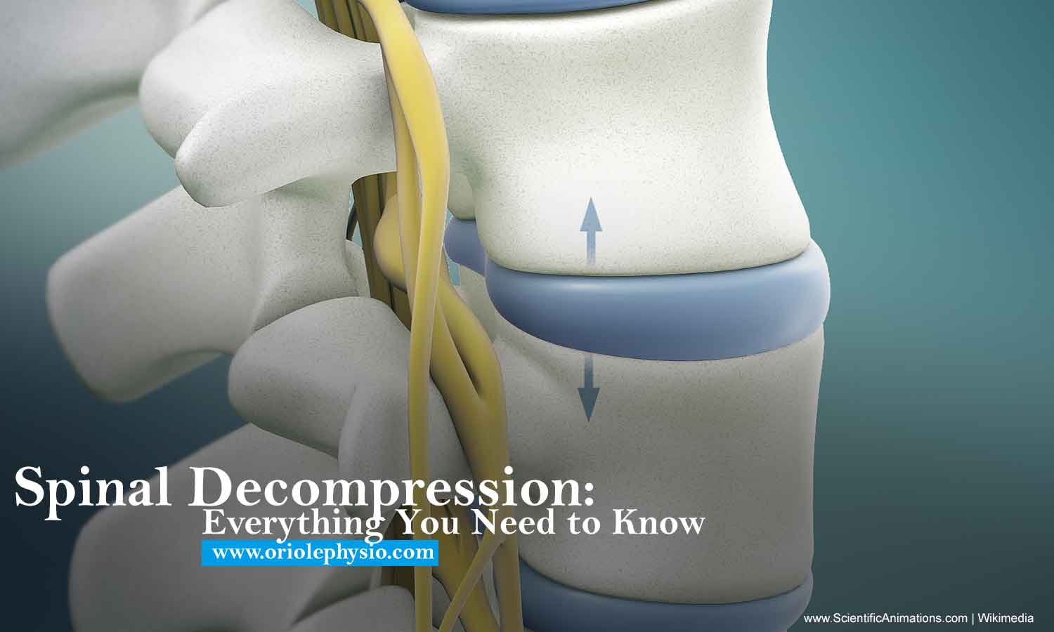 Spinal Decompression: Everything You Need to Know