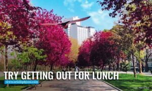 Try getting out for lunch