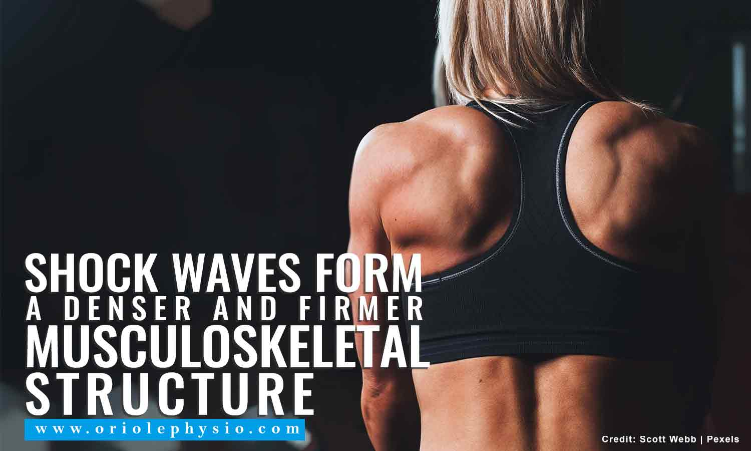 Shock waves form a denser and firmer musculoskeletal structure